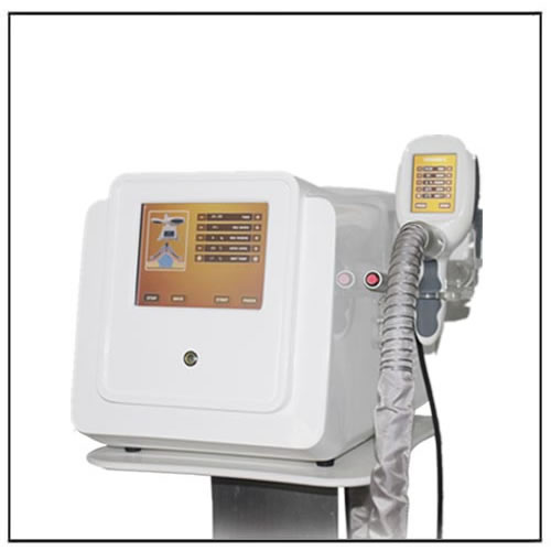 Portable Criolipolysis Weight Loss Beauty Machine