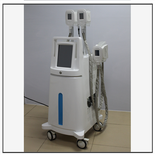 Cool Tech Equipment Cryolipolyse Body Slimming