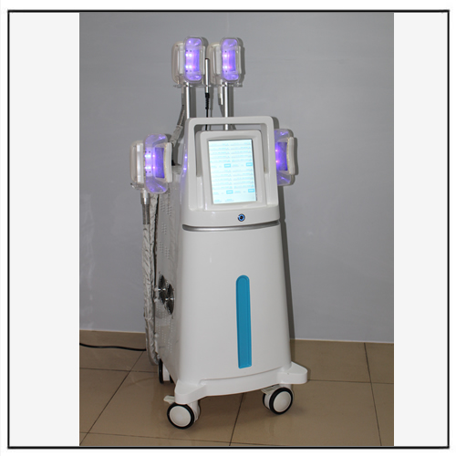 Professional Vertical Cryolipolysis Fat Freezing System