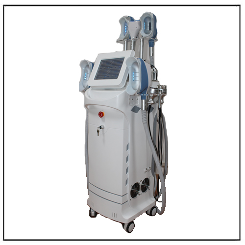 Multiple-function 5 Handles Cryolipolyse Cavitation Radio Frequency Lipolaser Beauty Equipment